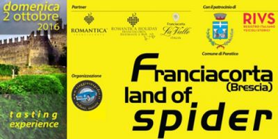 Franciacorta-land-of-spider
